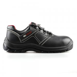 basic low cut safety shoes with steel toecap and steel midsole(SN5734)